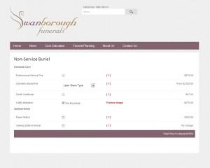 swanwebsite3